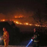 Se perdieron más de 2.500 hectáreas por incendios forestales