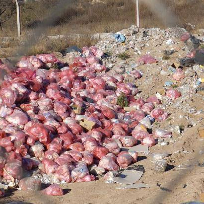 Piden la emergencia provincial por los residuos patológicos sin ...