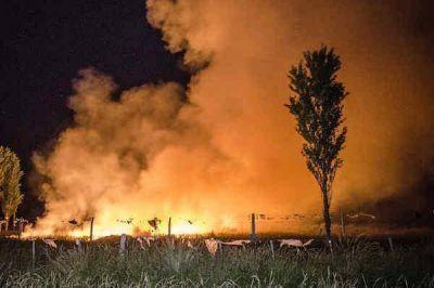 """Incendios en el basural: desde Medio Ambiente hablaron de un """"atentado"""""""