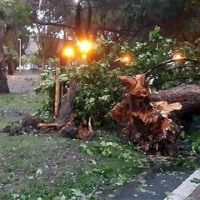 Se activó la asistencia provincial tras el temporal en Entre Ríos