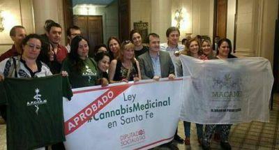 Santa Fe tiene ley para el uso medicinal del Cannabis