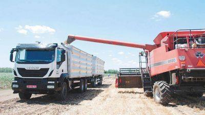 Se gastan $ 52.700 millones anuales en el transporte de granos y carne por camión