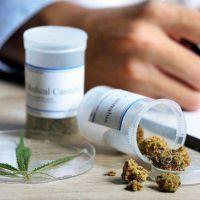 El uso medicinal del cannabis es ley en Neuquén