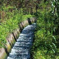 En la legislatura avanzan con una reglamentación que ponga fin a los canales clandestinos