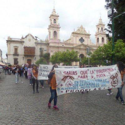 Proteccionistas reclaman que en la ciudad de Salta se prohiba el uso de la pirotecnia