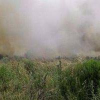 Un importante incendio destruyó 200 hectáreas en Sierra de los Padres