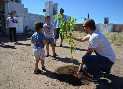 Más oxígeno para La Punta: plantaron más de mil árboles