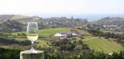 La comercialización de vinos cayó 10,7% en octubre pasado
