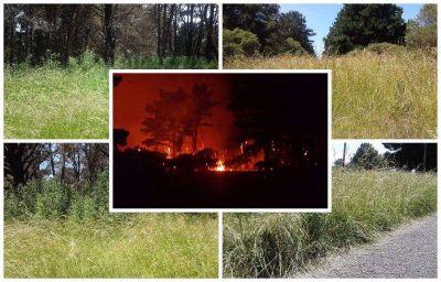 Vecinos de El Marquesado temen que la reserva forestal se incendie otra vez