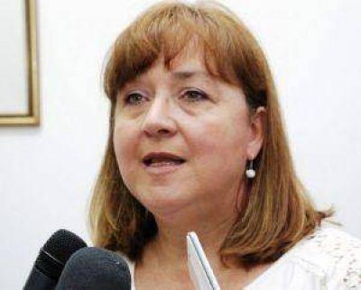 Ambiente objetó el proyecto municipal de Resistencia por el sitio elegido de emplazamiento