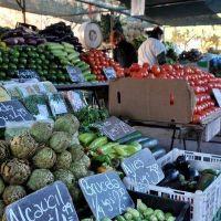 Polémica por un proyecto que permite la instalación de ferias itinerantes en Pilar