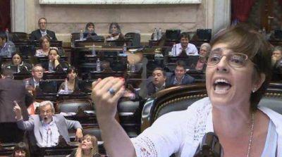 Para justificar la arbitraria detención de Sala, Cambiemos atacó a la OEA  Gabriela Burgos cuestionó la honestidad de la OEA