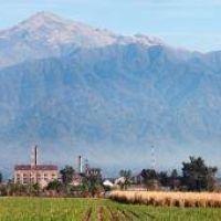 Postulan a Tucumán como sede mundial del azúcar