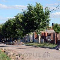 Se quitó la cañería de Sierra Chica que arrojaba aguas servidas a la vía pública