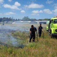 Hay más de 20 incendios diarios en pastizales