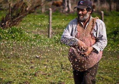 Papa Francisco reivindica la importancia del mundo rural