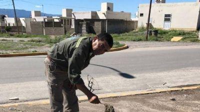 Trabajos de limpieza de cloacas en la Capital