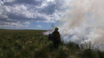 Aseguran que el incendio forestal en el Ambato es intencional