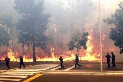 El intendente de Pinamar, Martín Yeza, aseguró que el voraz incendio fue intencional