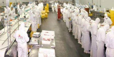 El frigorífico avícola Tres Arroyos cerró su planta de Entre Ríos: 1.100 trabajadores quedaron en la calle