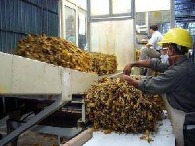Tabacal Agroindustria: se habría llegado a un acuerdo