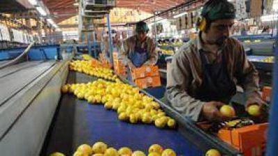 EE.UU. le dio luz verde al ingreso del limón argentino a su mercado