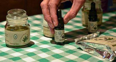 El cannabis medicinal ya es una realidad en Salta