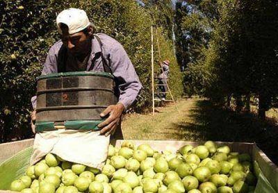 Cinco mil trabajadores serán beneficiados por el plan interzafra