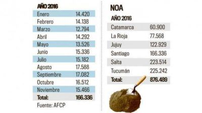 Tucumán es la primera provincia con mayor consumo de cemento en bolsas en la región en 2016
