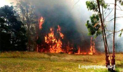 Nuevo incendio de pastizales en Sierra de los Padres