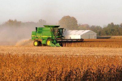 Oficializaron la reducción progresiva de las retenciones a la soja