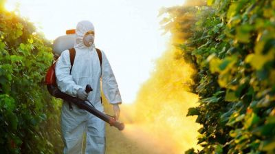Buscan prohibir el uso de agrotóxicos por ser posible causante de cáncer y malformaciones