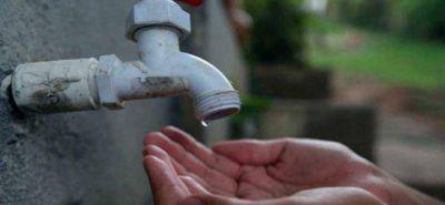 Preocupa la falta de agua en el Bosque Peralta Ramos