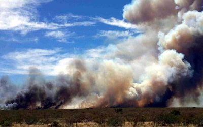 Por los incendios, ATE lanzó campaña solidaria y cuestionó al gobierno