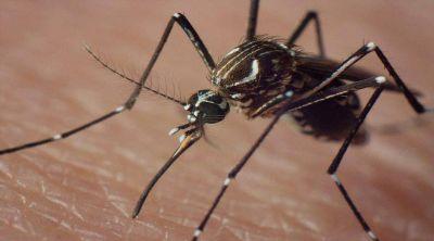 Capacitación sobre dengue, zika y chikungunya