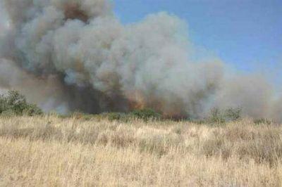 Reclaman créditos especiales para productores afectados por incendios