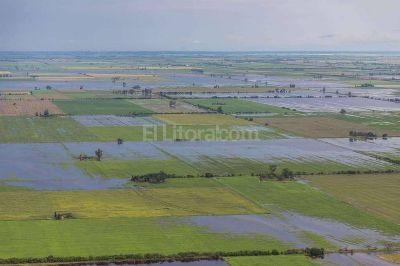 Millones de dólares perdidos por lluvias