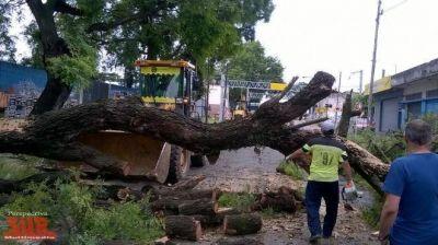 El Municipio de Quilmes se mostró activo luego del temporal
