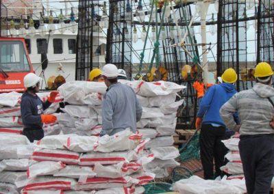 Renovarán incentivos para que la flota potera descargue en Mar del Plata
