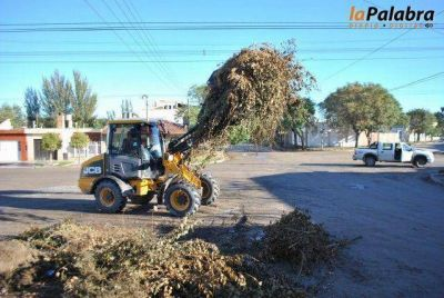 Comenzó el Operativo de limpieza barrial en Carmen de Patagones
