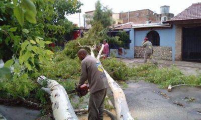 """""""La zona Sur y Este están devastadas por el temporal"""""""