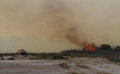 Diputado pide informe a Tierno por la ola de incendios