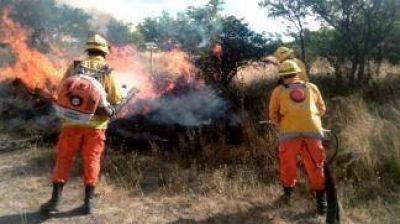 El incendio destruyó unas 963.016 hectáreas de campo