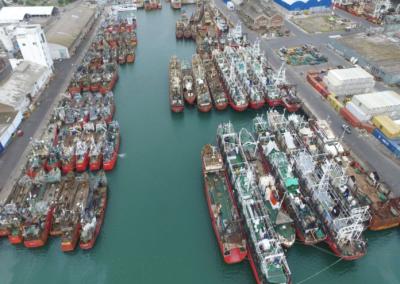 Sector pesquero denuncia millonarias pérdidas por la congestión del puerto