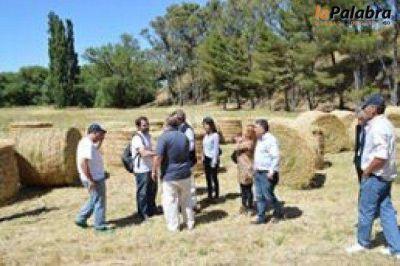 Patagones recibió asistencia para los productores afectados por los incendios