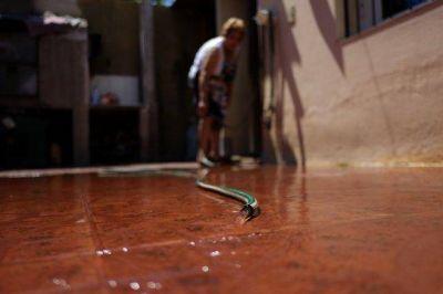 El derroche de agua le cuesta a Mendoza U$S20 millones por temporada estival