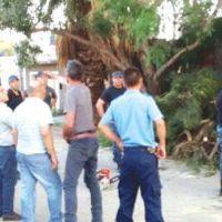 Restablecen el servicio de agua y energía en Olta
