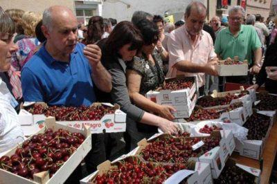 La producción de cerezas está cercana a los 2,5 millones de kg.