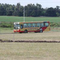 La Cámara de Transporte presentó el estudio de costos y pidió que el valor del boleto sea 12,16
