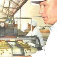 Destacan el progreso del cluster olivícola en La Rioja
